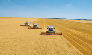 Минсельхоз: Россия войдет в топ-10 экспортеров продовольствия