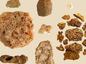 Найдены следы самых древних шаманов Америки