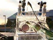 Энергетики приручают искусственный фотосинтез