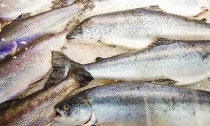 Житель Калининграда увез на попутке 160 кг украденных морепродуктов