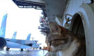 """Рассекречен сирийский поход """"тяжелого котонесущего крейсера"""""""