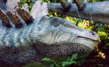 Динозавры вымерли незацелованными