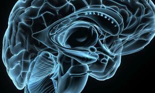 Чтение стихов развивает мозг