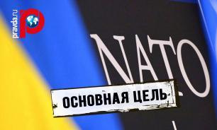 Рада приняла закон, закрепляющий стремление Украины стать членом НАТО