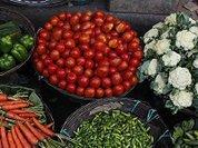 Бессмысленная и беспощадная война с ГМО