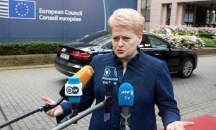 """Вернувшимся на родину литовцам обещают """"теплый прием и заботу"""""""