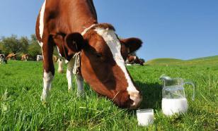 Французскую корову Ольгу продали за рекордные 130 тысяч евро
