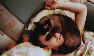 Врачи посоветовали не спать с кошками из-за риска серьезных заболеваний