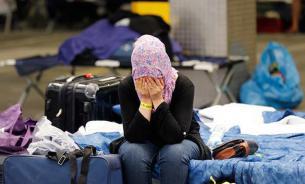 Семья сирийцев покинула Шереметьево спустя два месяца жизни на чемоданах