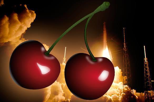 Болгарские ученые изобрели ягодное топливо