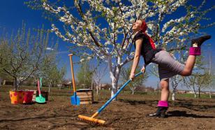 Апрель: работы в саду. Советы новичкам-садоводам