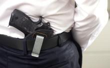Пневматическое оружие: с ним можно не только стрелять по банкам, но и охотиться