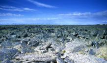 Казахским геоглифам более восьми тысяч лет?