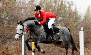 Человек и лошадь: история конного спорта