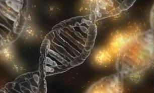 О пользе и опасностях генотерапии для человечества — Борис ЛОРДКИПАНИДЗЕ