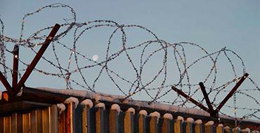 Правозащитник: Все страны мира пытаются вернуть своих граждан
