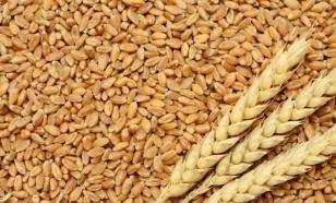 Варианты полезных зерновых для сбалансированного питания