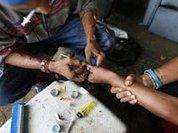 Наркотики: смертельные шипы гавайских роз