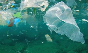 WWF: до 12 млн тонн пластика оказывается в Мировом океане каждый год