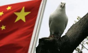 СМИ: Китай продемонстрировал, как нужно относиться к решениям Гааги