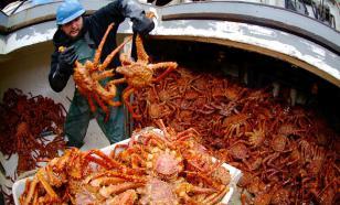 Продажа квот на вылов рыбы и краба добавила в федеральный бюджет  6,75 млрд рублей