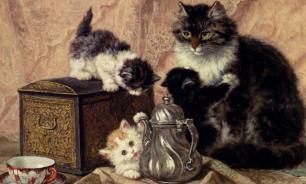 Анималисты обожали кошек с древности