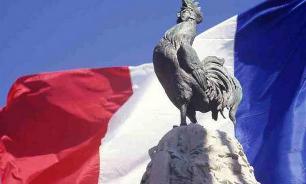 Во французской деревне за громкое кукареканье судят петуха