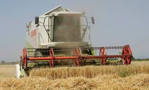 Слабый рубль вытесняет США и Канаду с рынка зерна