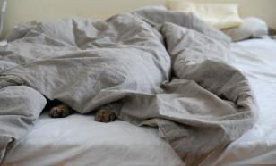 Совам на заметку: недосып не только убивает, но и спасает