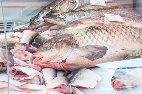 Индийские ученые: сырая рыба защищает от рака
