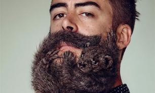 В мужской бороде обитают стафилококки и кишечные бактерии