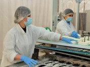 В Тюменской области откроются десятки новых производств