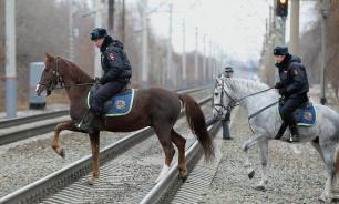 Мошенники сядут за истощение полицейских лошадей