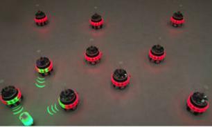 Настоящих роботов-трансформеров создали европейские ученые