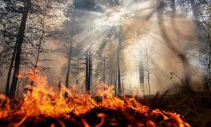 Генпрокуратура установила, что лес в Приангарье подожгли намеренно