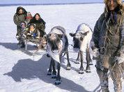 Арктический законопроект на финишной прямой