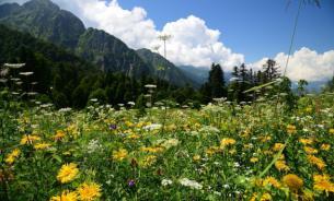 """Курорт """"Роза Хутор"""": чем заняться в горах летом"""
