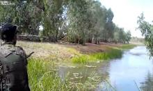 В Австралии сняли на видео погоню взбешенного крокодила за охотниками