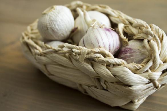 Старый добрый чеснок: рецепты элексиров здоровья