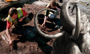 В Пермском крае раскопали два скелета предков мамонта