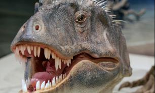 Найден самый травмированный динозавр