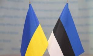 Чем маленькая Эстония может помочь большой Украине