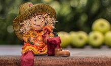 Осенние лайфхаки: как преобразить свой сад