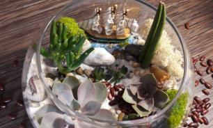 Флорариум в зимнем стиле: красота в доме