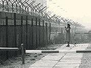 Кирпичи Берлинской стены берегли для Украины