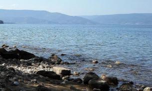 Тысячи тонн вредных веществ попадают в Байкал через реку Селенга