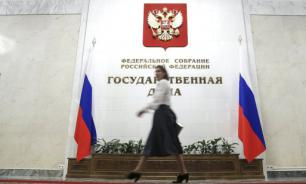 Госдума проведет расследование вмешательства во внутренние дела России