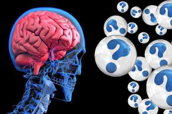 Мозг человека работает даже после смерти