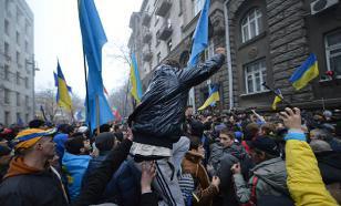 Лариса Шеслер: на Украине молдавский сценарий пока не пройдет