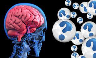 """Бактерии """"облюбовали"""" для жизни человеческий мозг"""
